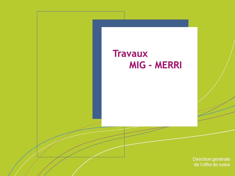 Travaux MIG - MERRI ORGANISATION & MISSIONS Direction générale
