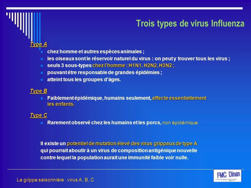 Trois types de virus Influenza
