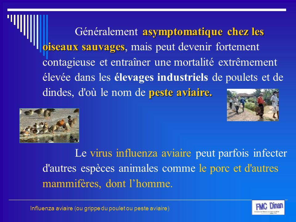 Généralement asymptomatique chez les oiseaux sauvages, mais peut devenir fortement contagieuse et entraîner une mortalité extrêmement élevée dans les élevages industriels de poulets et de dindes, d où le nom de peste aviaire.