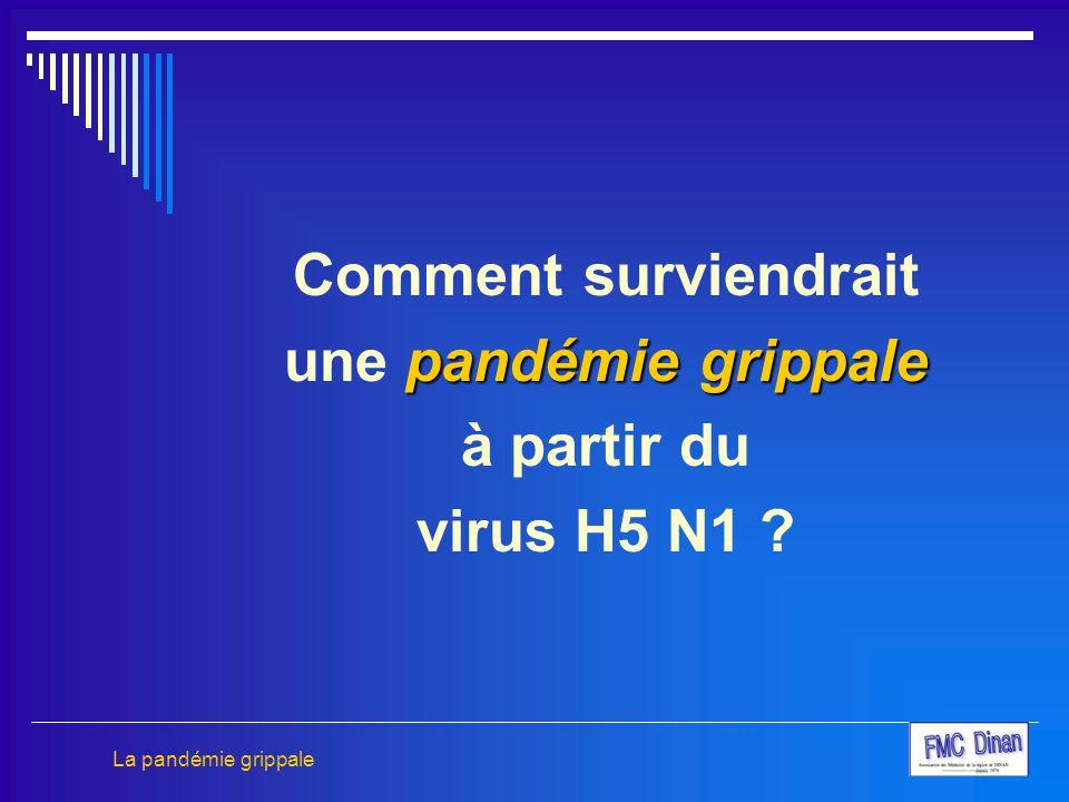 Comment surviendrait une pandémie grippale à partir du virus H5 N1