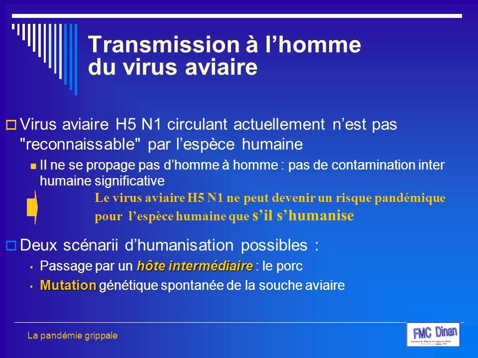 Transmission à l'homme du virus aviaire
