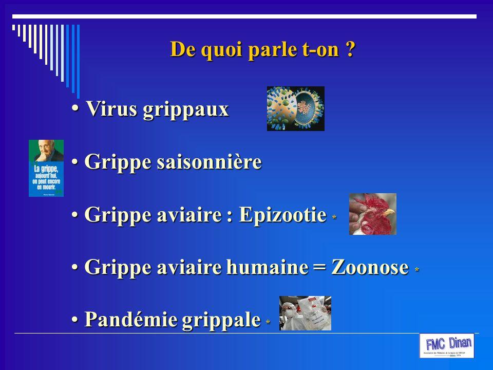Virus grippaux De quoi parle t-on Grippe saisonnière