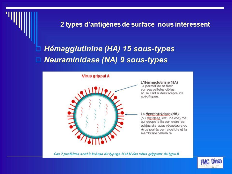 2 types d'antigènes de surface nous intéressent