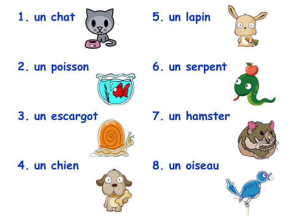 un chat un poisson un escargot un chien un lapin un serpent un hamster un oiseau