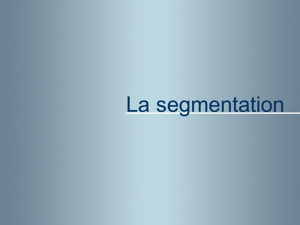 La segmentation
