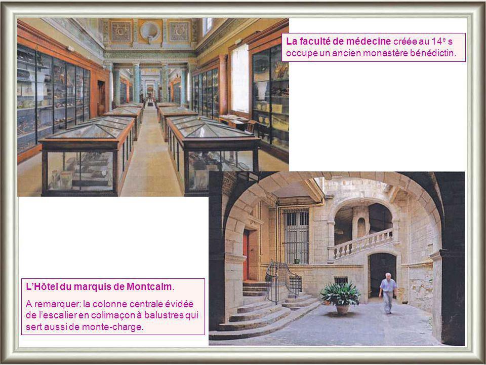 La faculté de médecine créée au 14e s occupe un ancien monastère bénédictin.