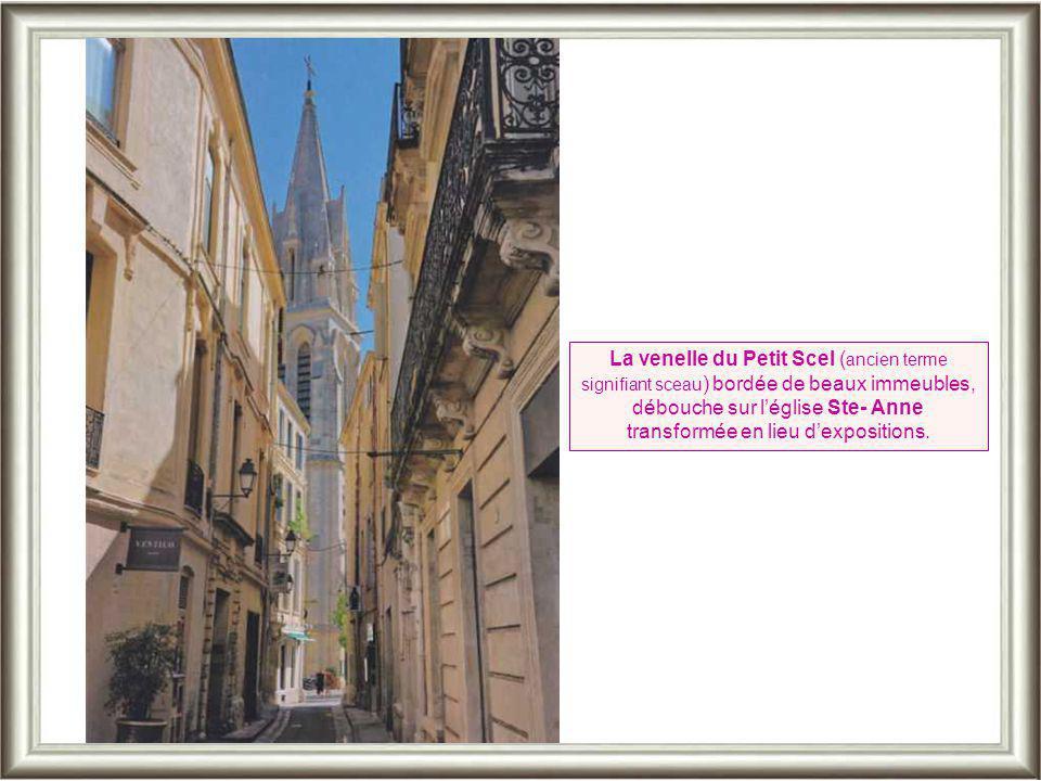 La venelle du Petit Scel (ancien terme signifiant sceau) bordée de beaux immeubles, débouche sur l'église Ste- Anne transformée en lieu d'expositions.
