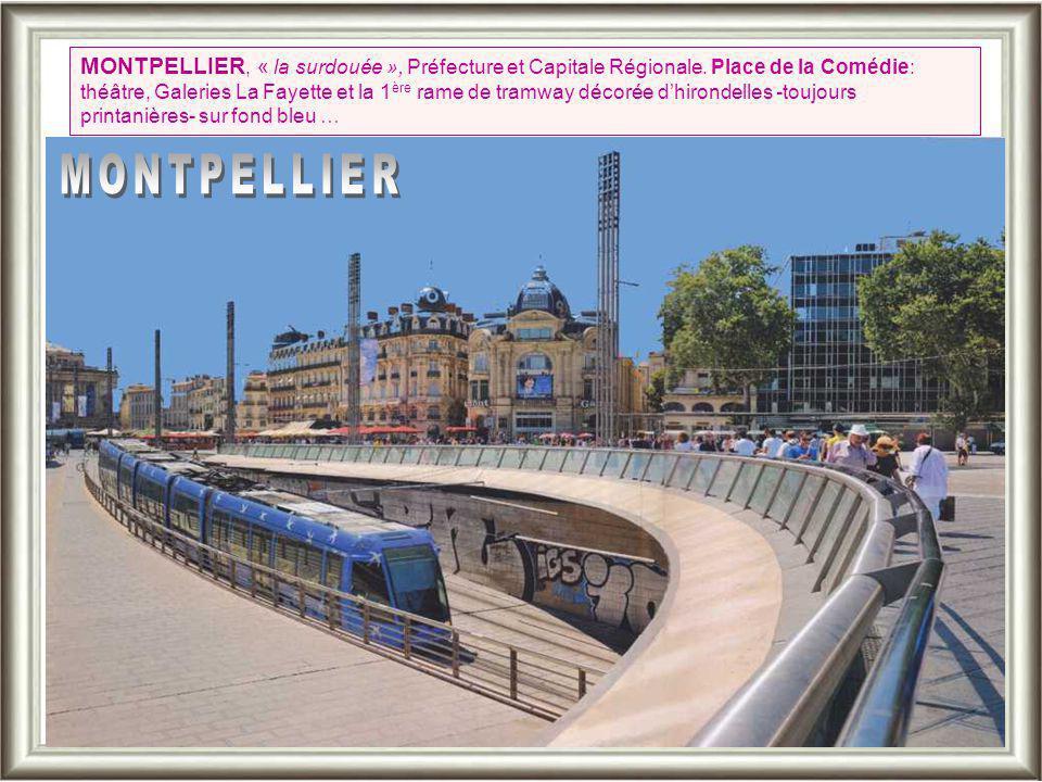 MONTPELLIER, « la surdouée », Préfecture et Capitale Régionale