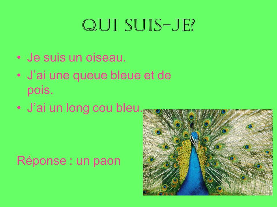 Qui suis-je Je suis un oiseau. J'ai une queue bleue et de pois.