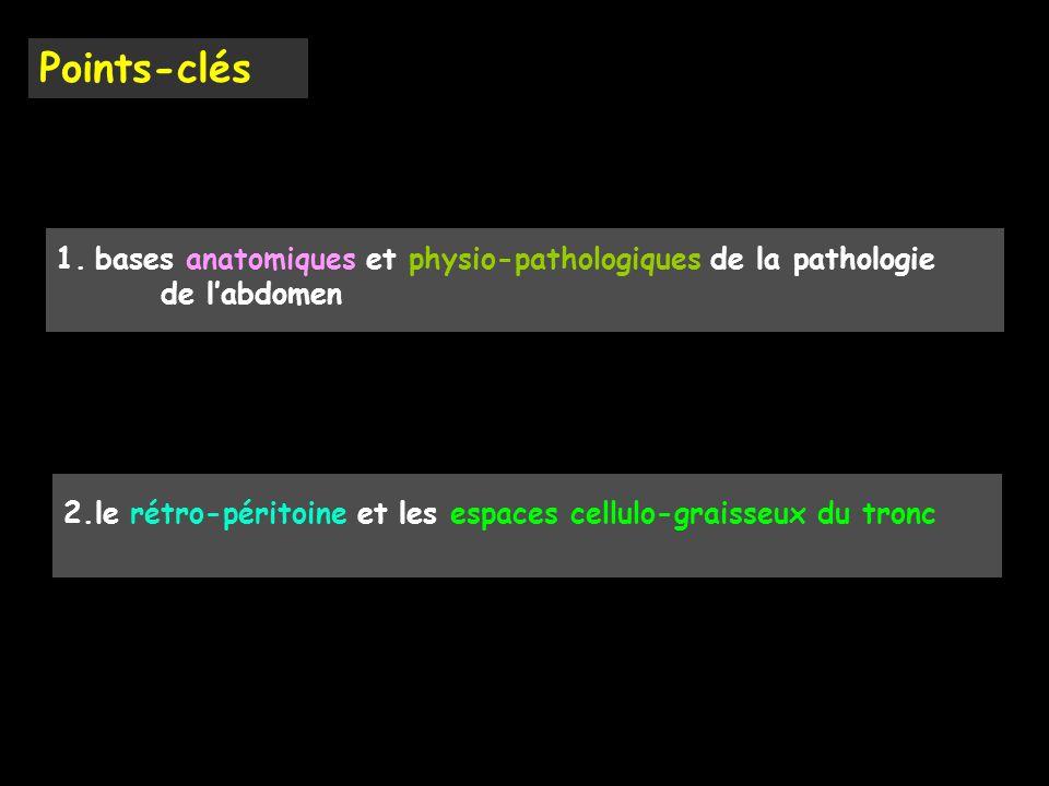 Points-clés bases anatomiques et physio-pathologiques de la pathologie de l'abdomen.