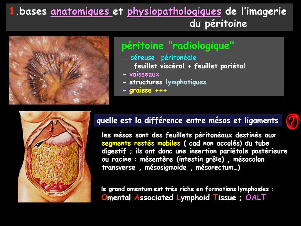 péritoine radiologique