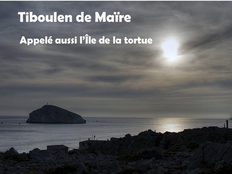 Tiboulen de Maïre Appelé aussi l'Île de la tortue