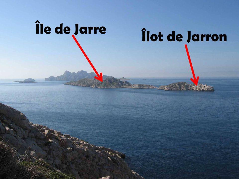 Île de Jarre Îlot de Jarron