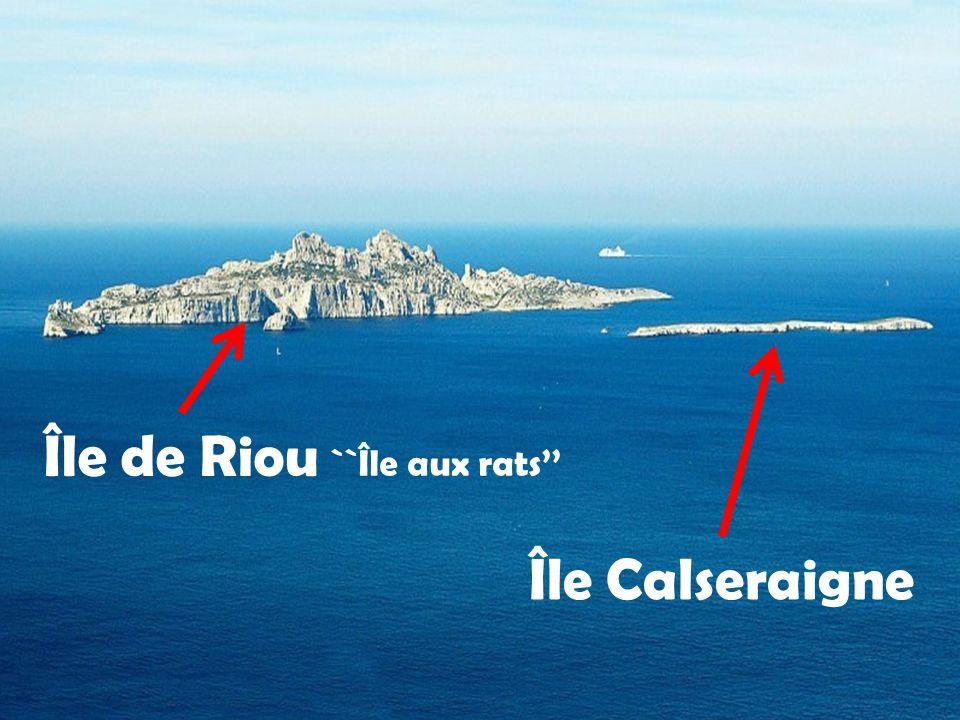 Île de Riou ``Île aux rats'' Île Calseraigne