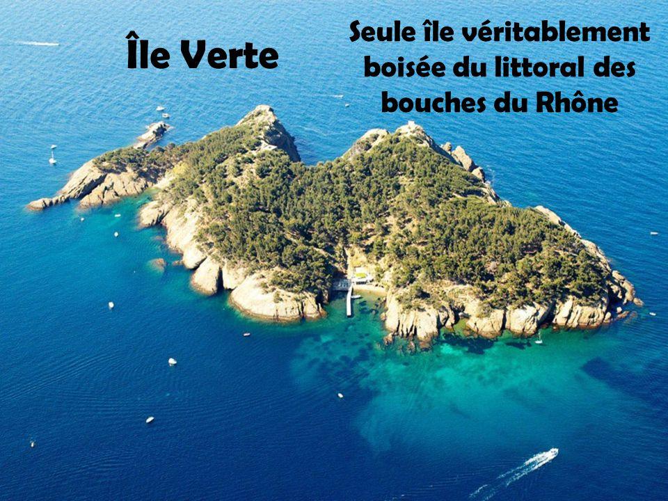 Seule île véritablement boisée du littoral des bouches du Rhône
