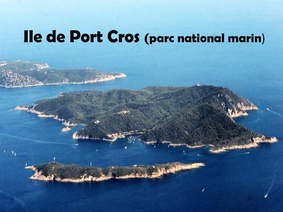 Ile de Port Cros (parc national marin)