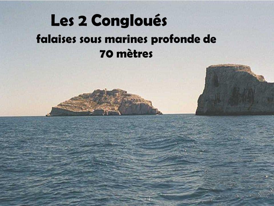 falaises sous marines profonde de 70 mètres
