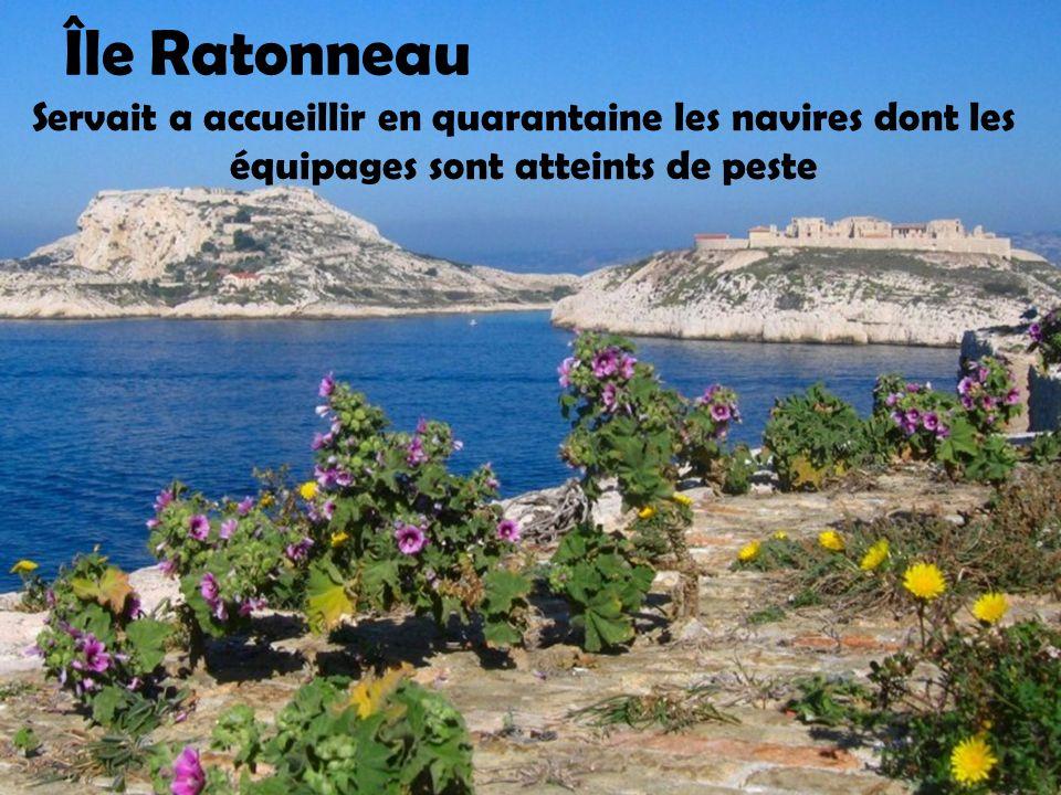 Île Ratonneau Servait a accueillir en quarantaine les navires dont les équipages sont atteints de peste.
