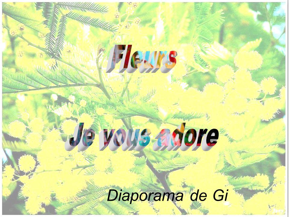 Fleurs Je vous adore Diaporama de Gi