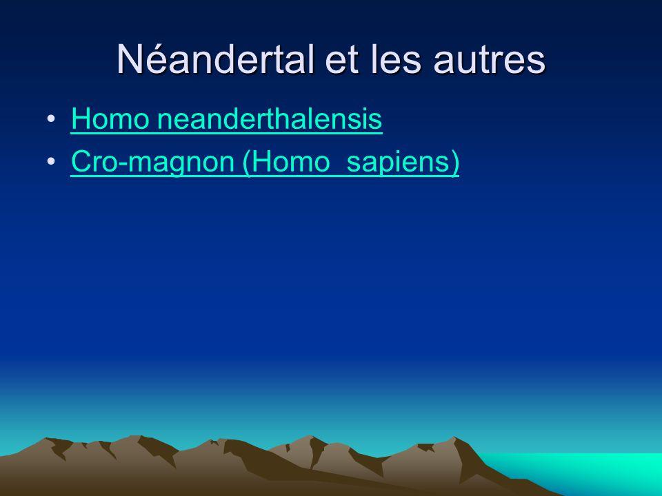 Néandertal et les autres