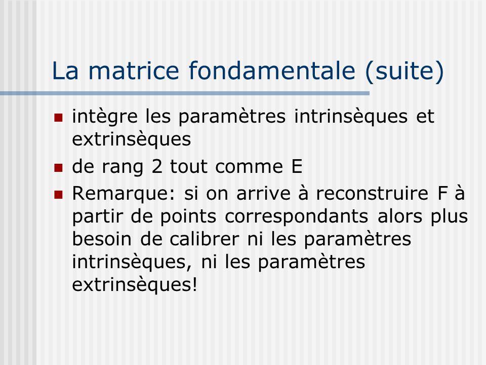 La matrice fondamentale (suite)