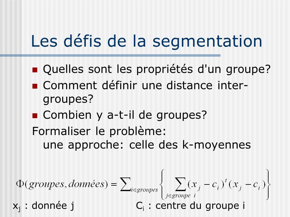 Les défis de la segmentation