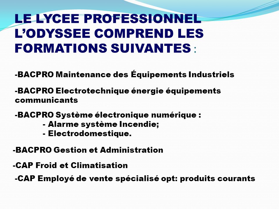 LE LYCEE PROFESSIONNEL L'ODYSSEE COMPREND LES FORMATIONS SUIVANTES :