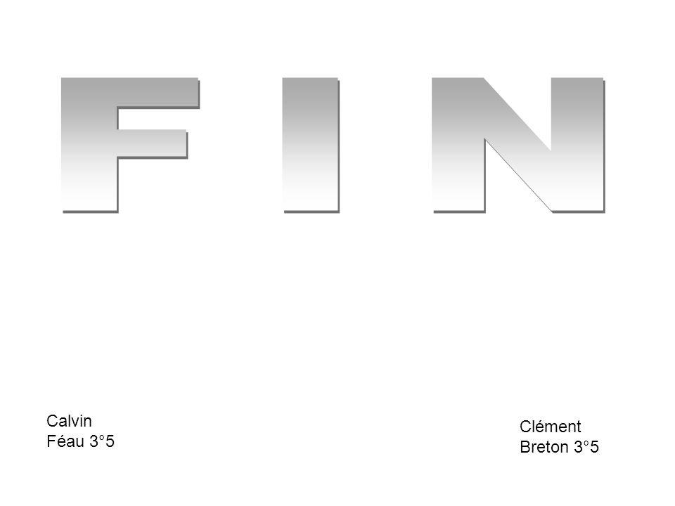FIN Calvin Féau 3°5 Clément Breton 3°5