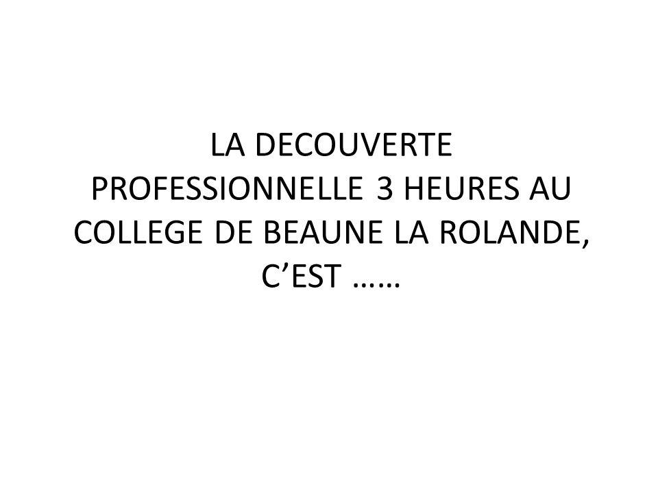 LA DECOUVERTE PROFESSIONNELLE 3 HEURES AU COLLEGE DE BEAUNE LA ROLANDE,