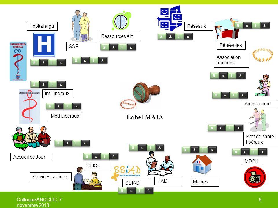 Label MAIA Hôpital aigu M. A. I. Réseaux Ressources Alz SSR Bénévoles