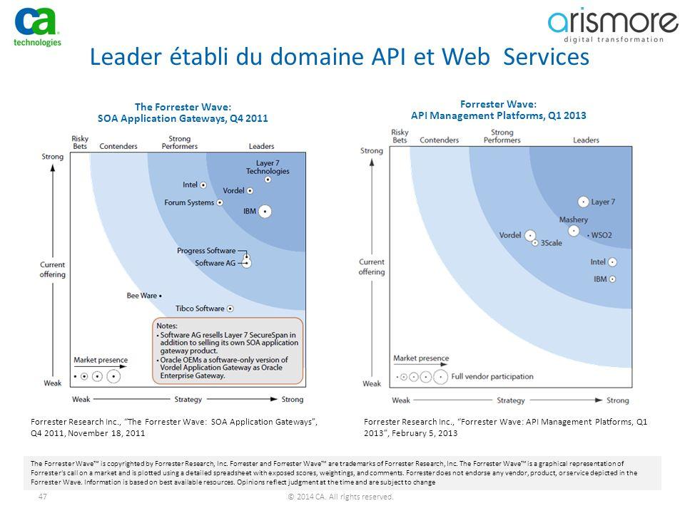 Leader établi du domaine API et Web Services