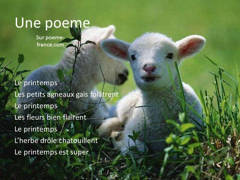 Une poeme Sur poeme-france.com.