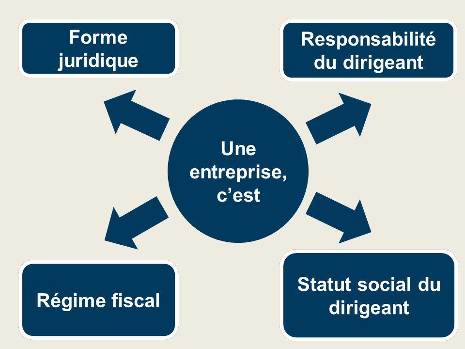 Responsabilité du dirigeant Statut social du dirigeant