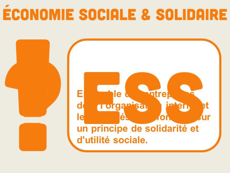 Ensemble des entreprises dont l'organisation interne et les activités sont fondées sur un principe de solidarité et d utilité sociale.