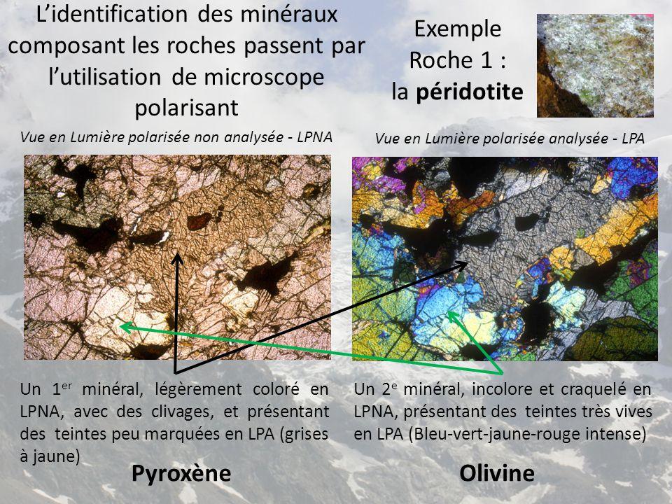 Exemple Roche 1 : la péridotite