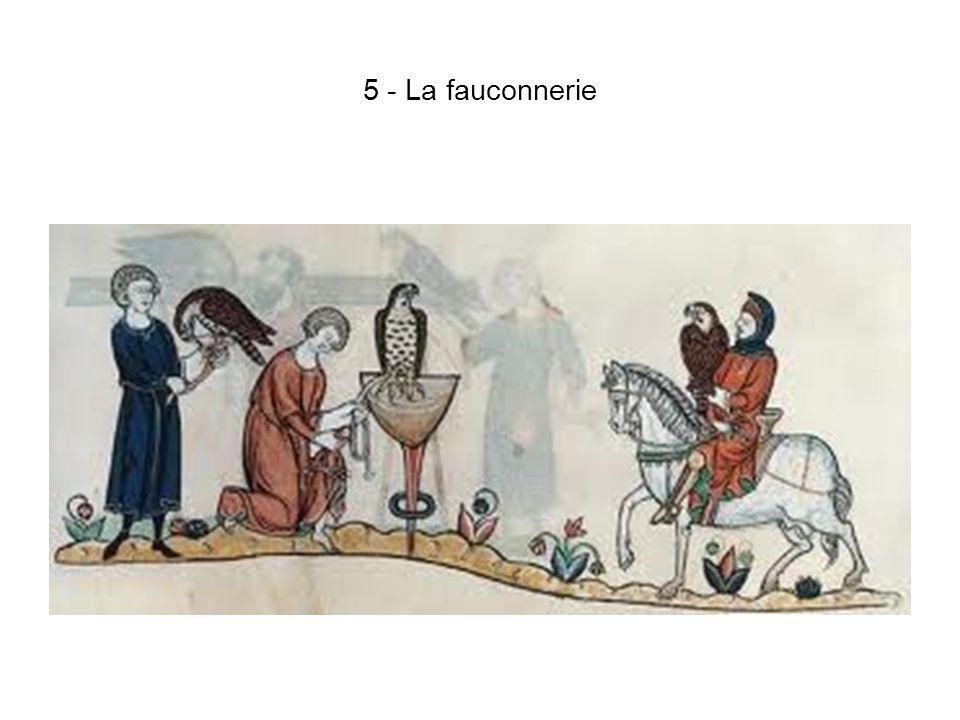 5 - La fauconnerie
