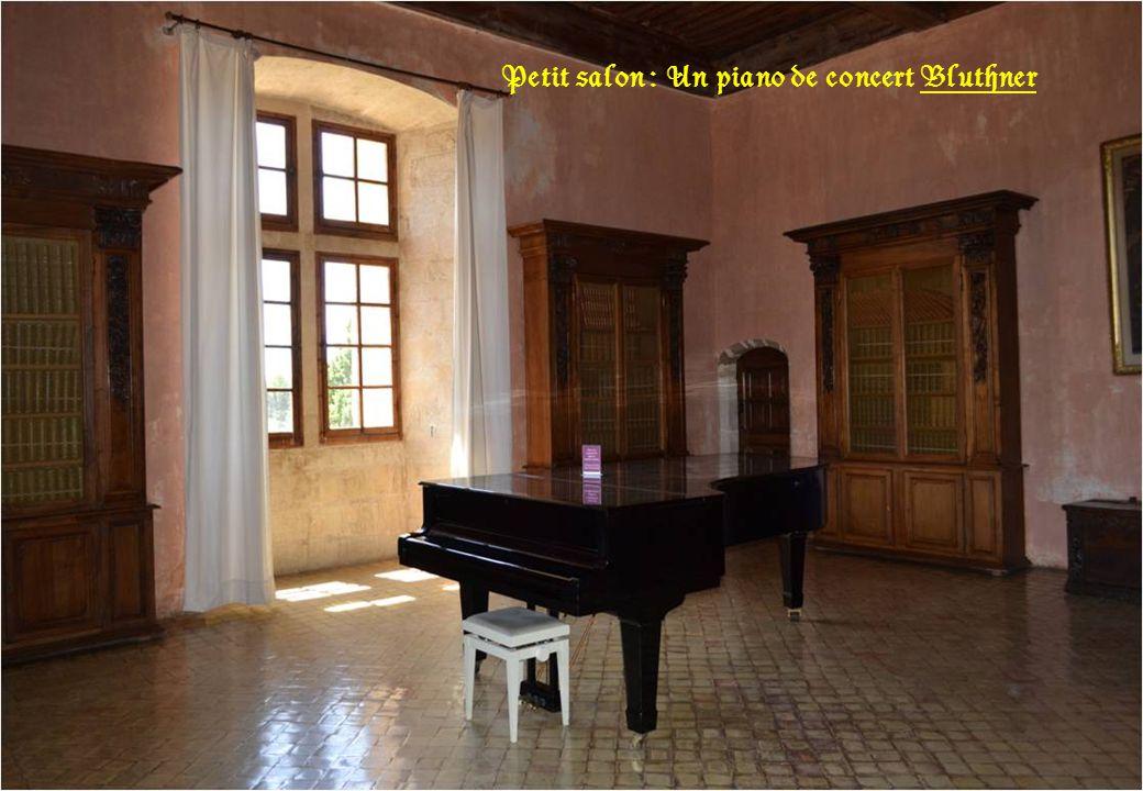 Petit salon : Un piano de concert Bluthner