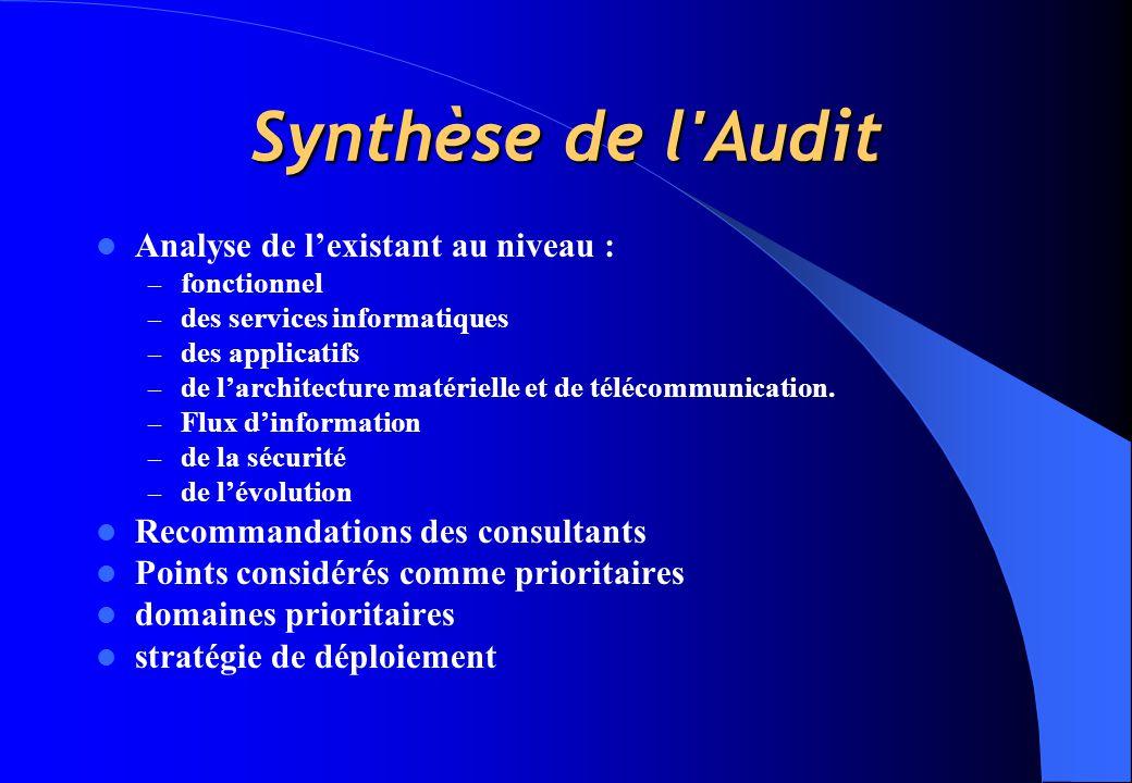 Synthèse de l Audit Analyse de l'existant au niveau :