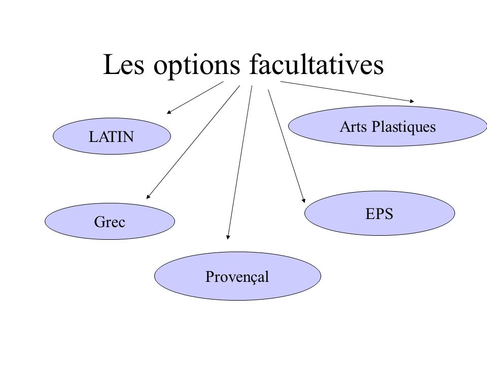 Les options facultatives