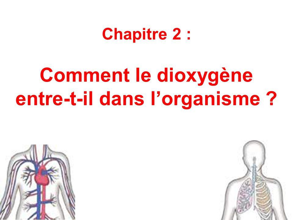 Chapitre 2 : Comment le dioxygène entre-t-il dans l'organisme
