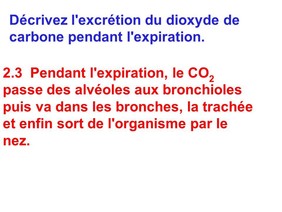 Décrivez l excrétion du dioxyde de carbone pendant l expiration.