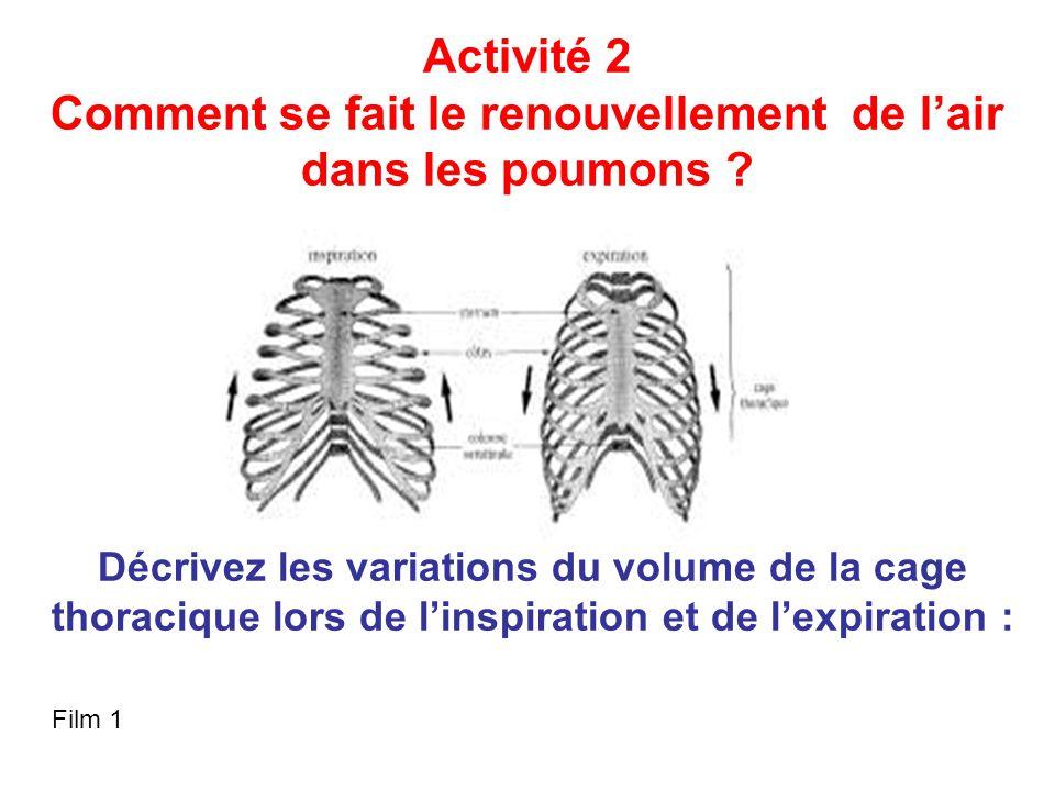 Comment se fait le renouvellement de l'air dans les poumons