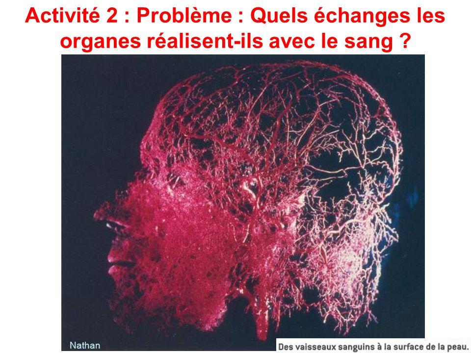 Activité 2 : Problème : Quels échanges les organes réalisent-ils avec le sang