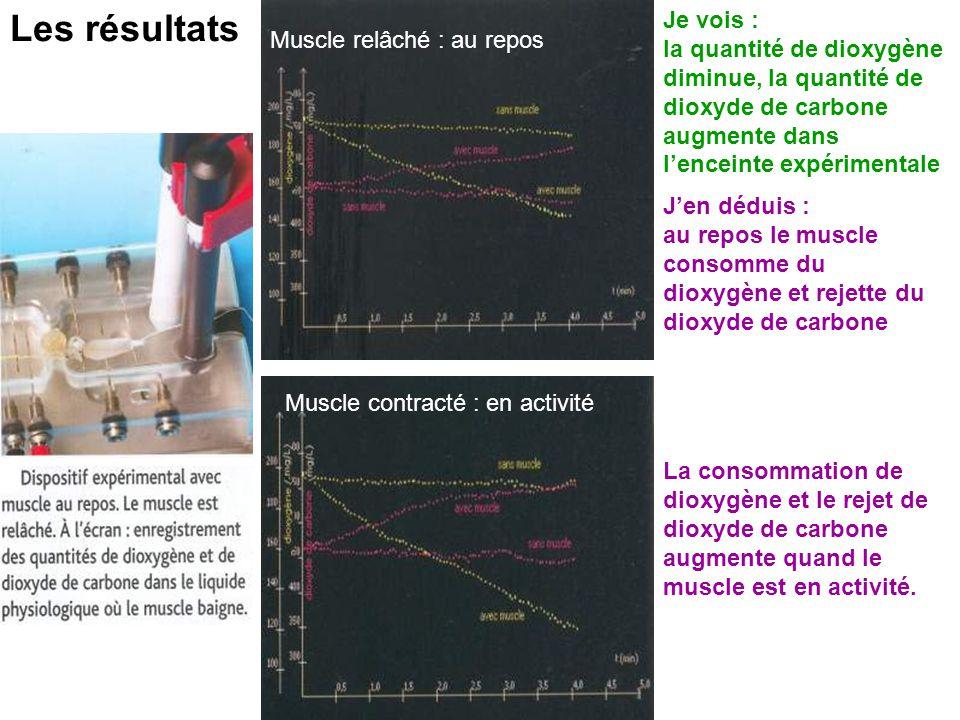 Les résultats Je vois : la quantité de dioxygène diminue, la quantité de dioxyde de carbone augmente dans l'enceinte expérimentale.