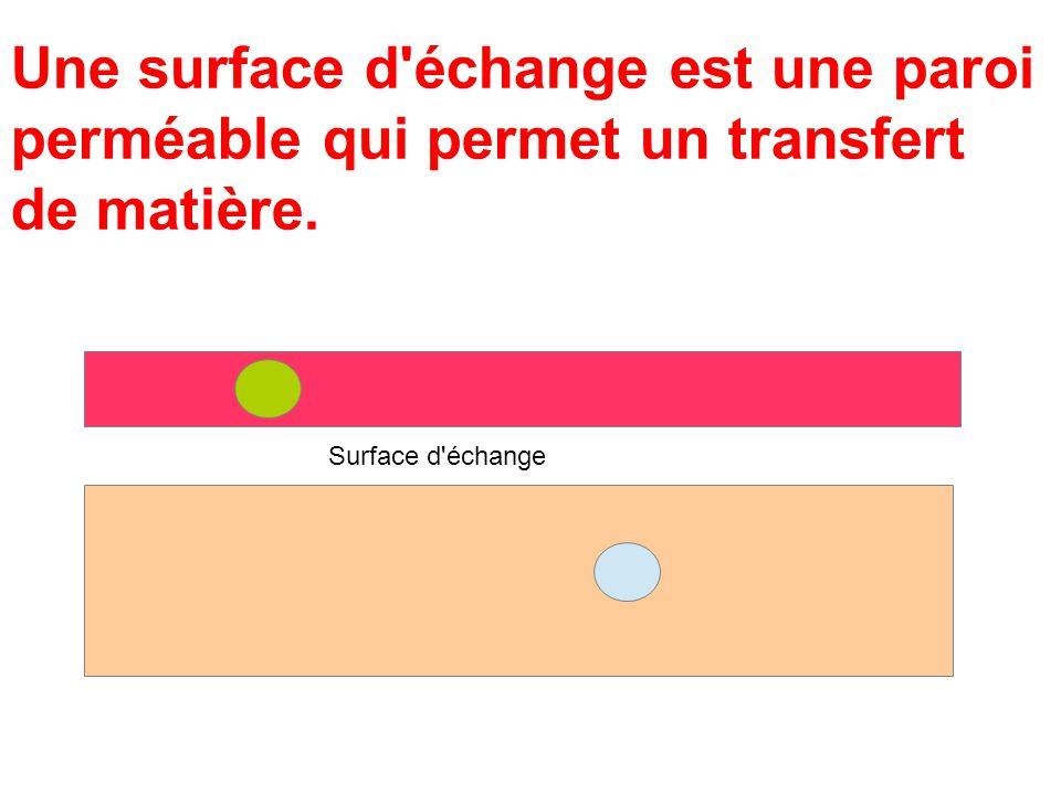 Une surface d échange est une paroi perméable qui permet un transfert de matière.