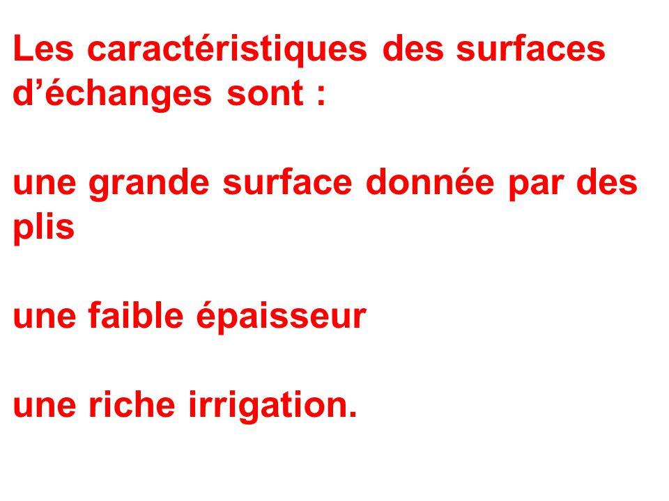 Les caractéristiques des surfaces d'échanges sont :
