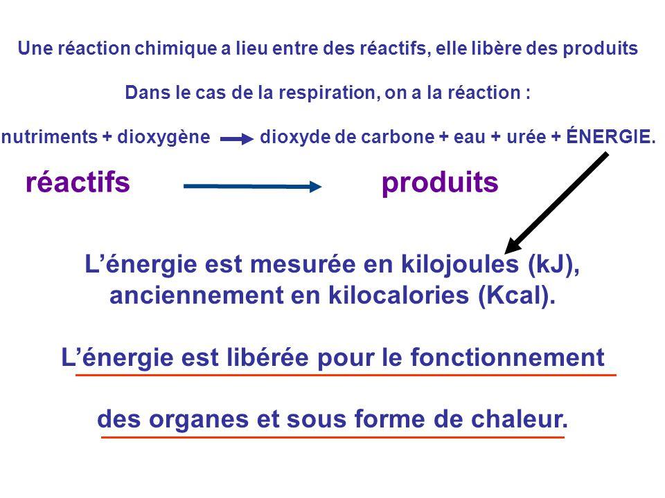 Une réaction chimique a lieu entre des réactifs, elle libère des produits