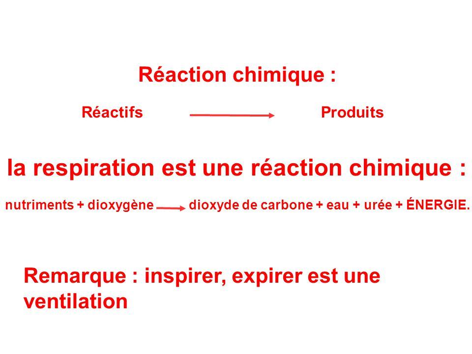 la respiration est une réaction chimique :