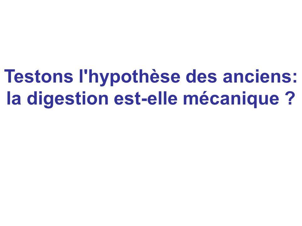 Testons l hypothèse des anciens: la digestion est-elle mécanique