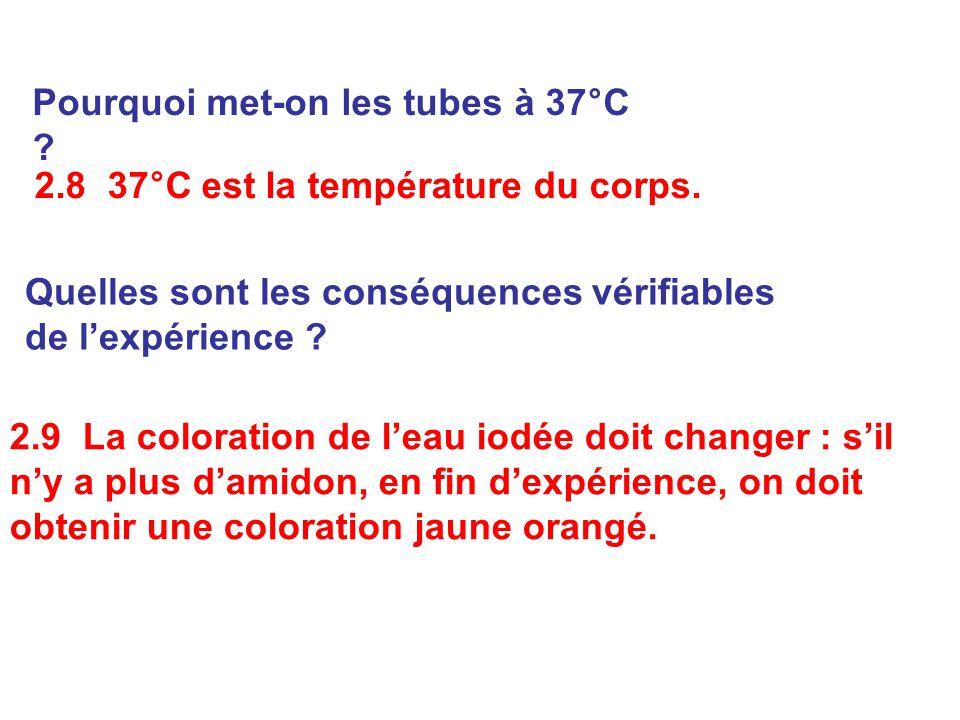 Pourquoi met-on les tubes à 37°C